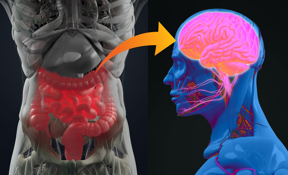 4 Quick Tips to Reset Your Stomach and Recharge Your Brain